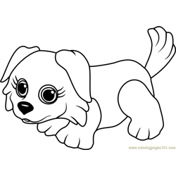 Border Collie Free Coloring Page for Kids