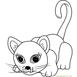 European Shorthair coloring page