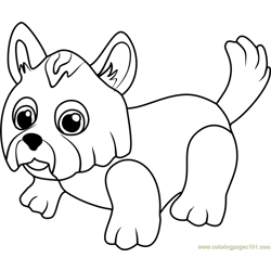 Yorkshire Terrier Free Coloring Page for Kids