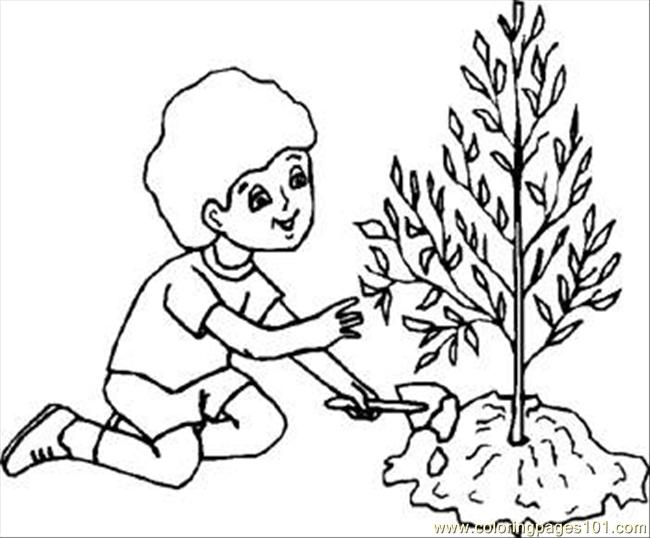 Boytree Rdax 65 Coloring Page