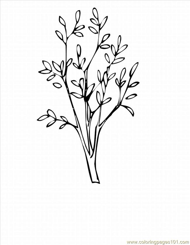 Herry Tree Coloring Pages Lrg Coloring Page