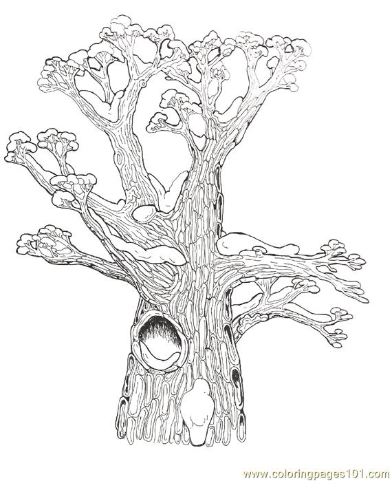 Hollow Tree Top Coloring Page Reversed Coloring Page Free Trees