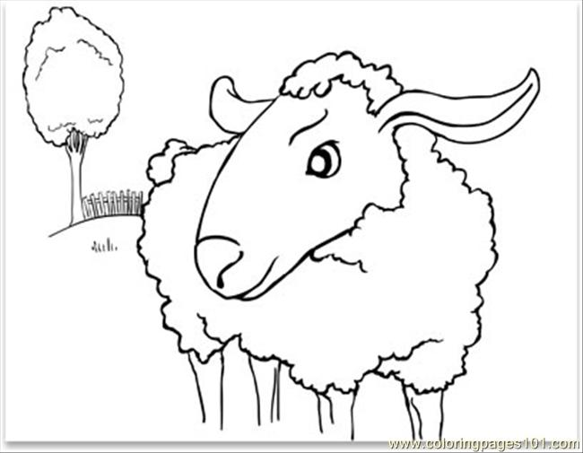 Sheep001 Coloring Page