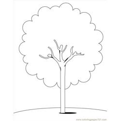 Trees (3) Free Coloring Page for Kids