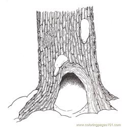 Hollow Tree Base Coloring Page
