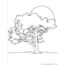 Tree Coloring Page Source 8dk