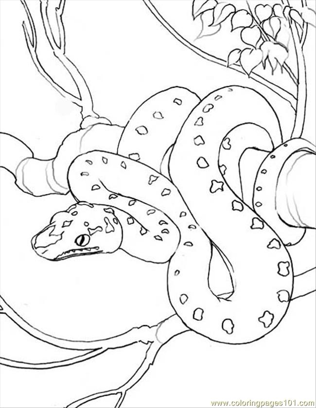 Treesnake Coloring Page