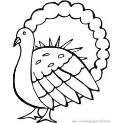 Turkey (11) coloring page