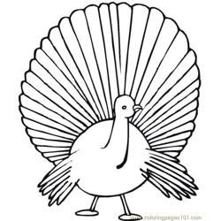 Turkey (6) Free Coloring Page for Kids