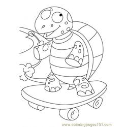Tortoise Coloring Page6