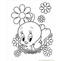Tweety Bird 5