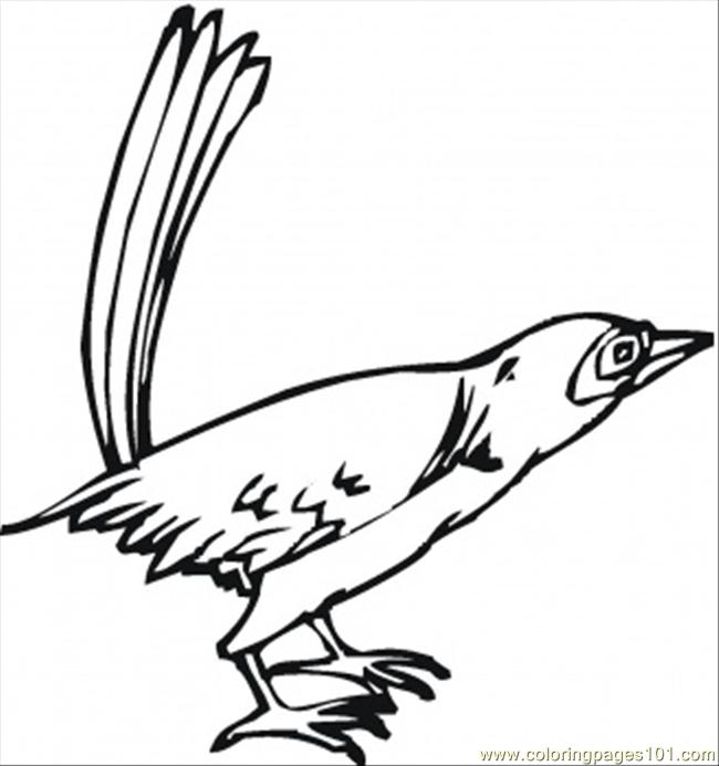 california state bird coloring pages - photo#16