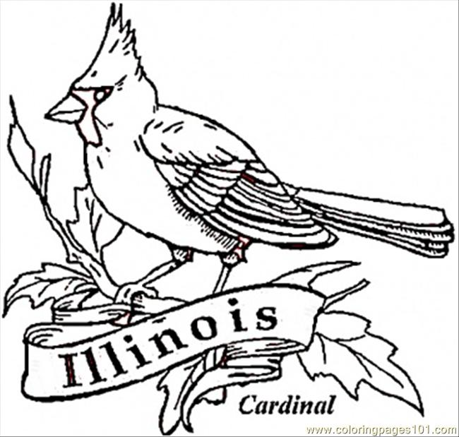 Cardinal Bird Of Illinois Coloring Page Free Usa Coloring Pages