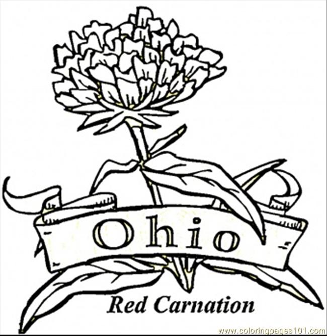 Ohio State Buckeyes Coloring Pages - Coloring Home | 667x650