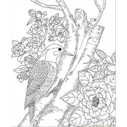Alabama State Bird Free Coloring Page for Kids