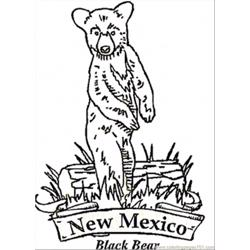 New Mexico Bear