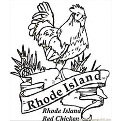 Red Chicken Of Rhole Island