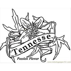 Tennesse