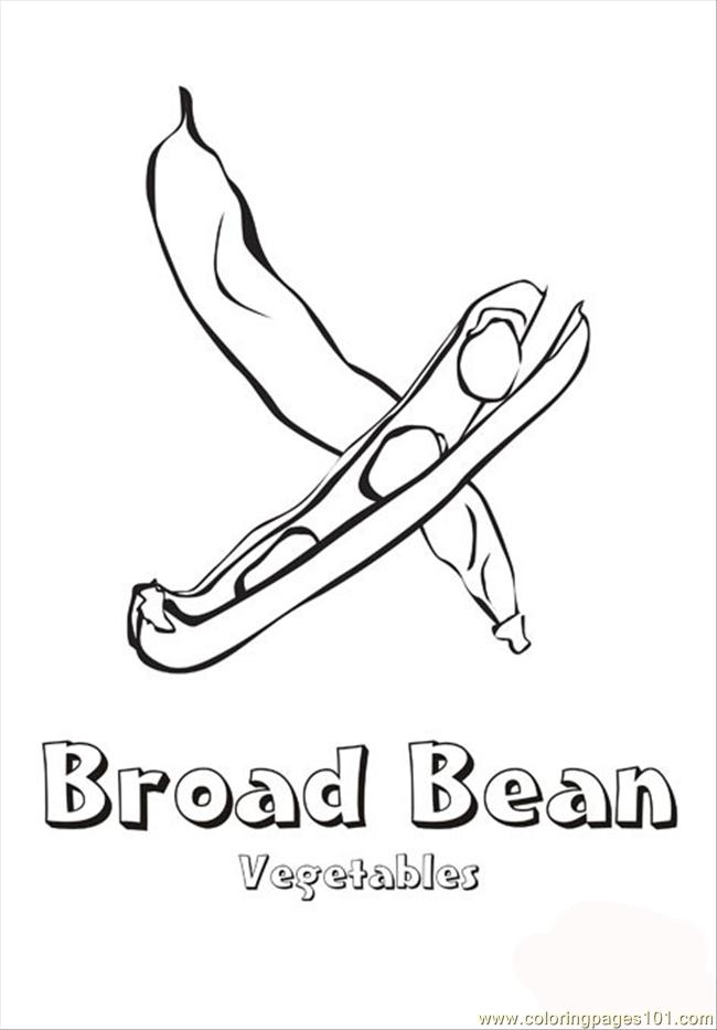 Broad Bean Coloring Page Free Vegetables Coloring Pages