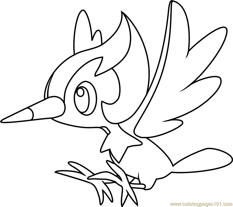 Pikipek pokemon sun and moon coloring page