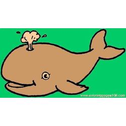 Whale Coloring Page 1