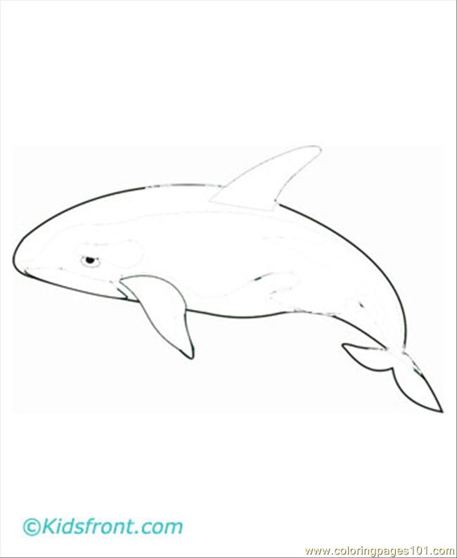 Whale4 Coloring Page