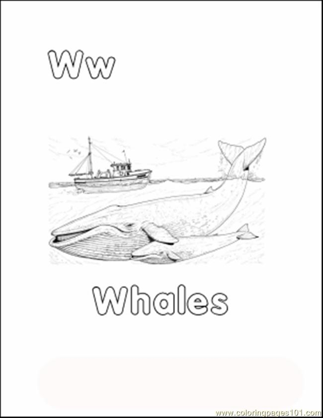 Whalecolor Coloring Page