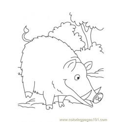 Wild Boar Coloring Page2 coloring page
