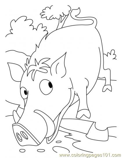 Wild Boar Coloring Page6 Page