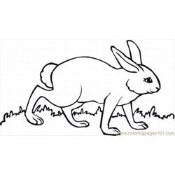 Ages Of Easter Bunnies 11 Lrg Free Coloring Page for Kids
