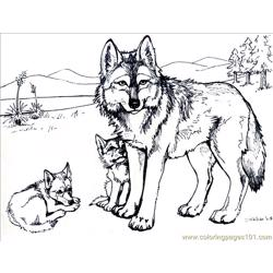 Wolf with Family