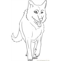 To Draw A Cartoon Wolf Step 6