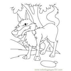 Wolf Coloring Page11