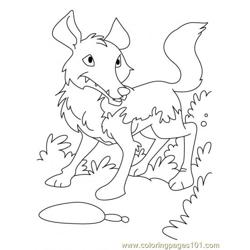 Wolf Coloring Page2