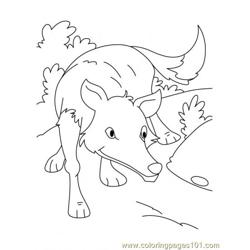 Wolf Coloring Page3