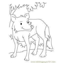 Wolf Coloring Page5