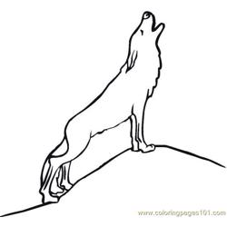 Wolves (11)
