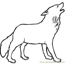 Wolves (13)