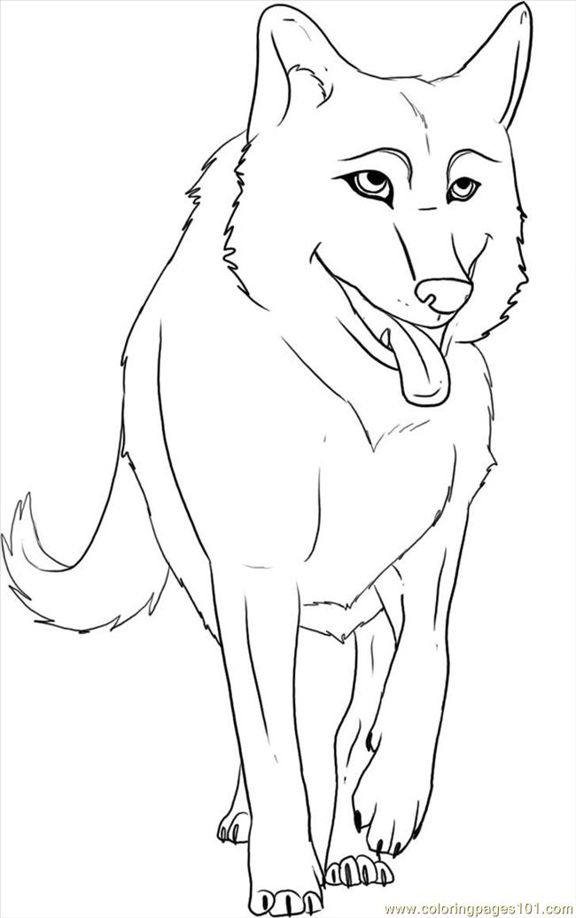 To draw a cartoon wolf step 6 coloring page free wolf for Cartoon wolf coloring pages