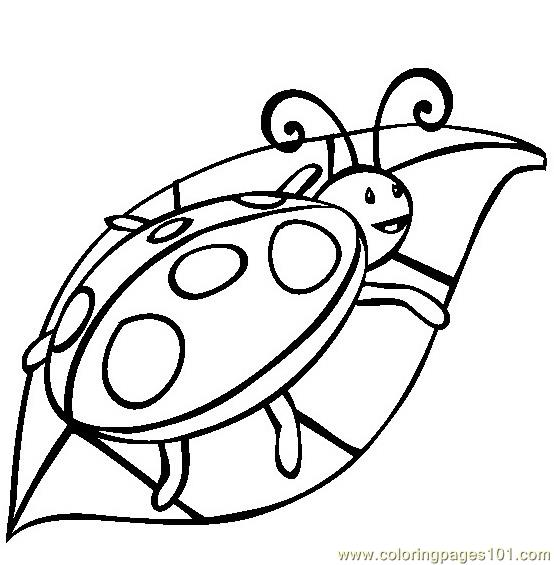 Ladybug Coloring Page Free Ladybugs Coloring Pages Coloringpages101 Com