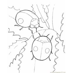 Two ladybugs Free Coloring Page for Kids
