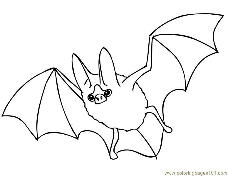 Bat coloring pages for Printable bat coloring pages