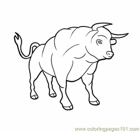 Bull printable coloring pages for Coloring pages of bulls