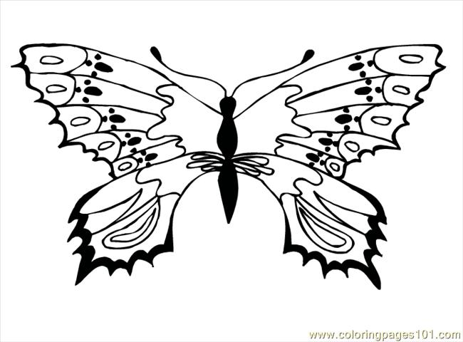 tribal butterflys Colouring Pages