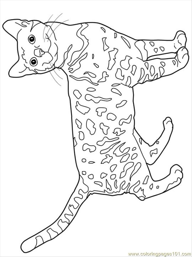 k state wildcat coloring pages - photo #44