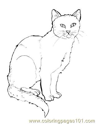 ninja cat coloring pages - photo#43