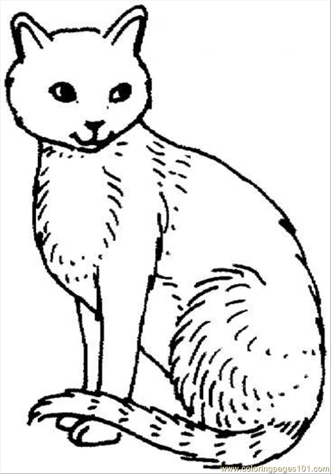 k state wildcat coloring pages - photo #14
