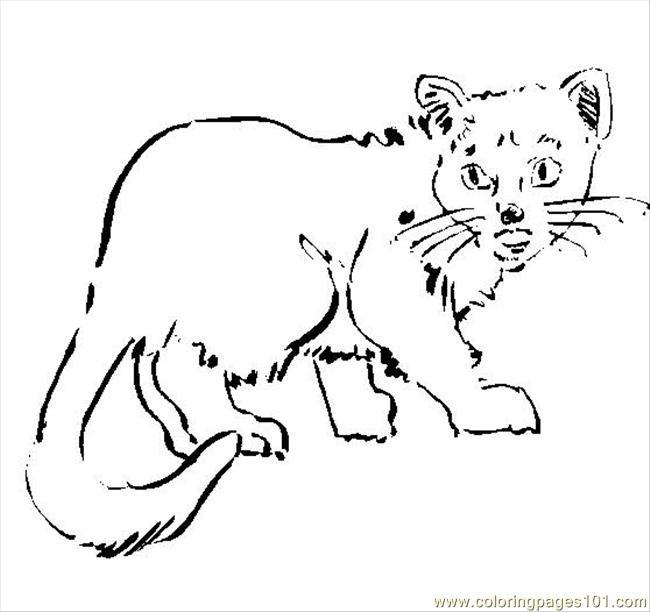 kentucky wildcat logo coloring pages - photo#24