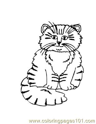 Coloring pages wildcat cats free printable page online for Wildcat coloring pages