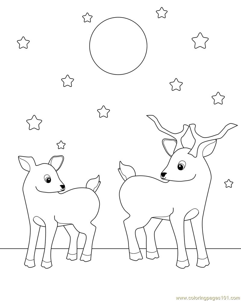 Go Back Images For Baby Deer Coloring Pages BabyDeerColoringPage Ekbgs